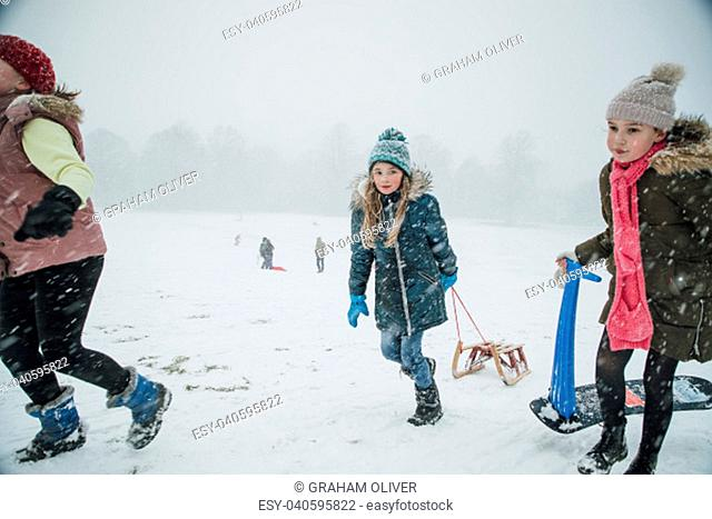 Little girls are walking up a hill with sleds in a snow blizzard to have a race