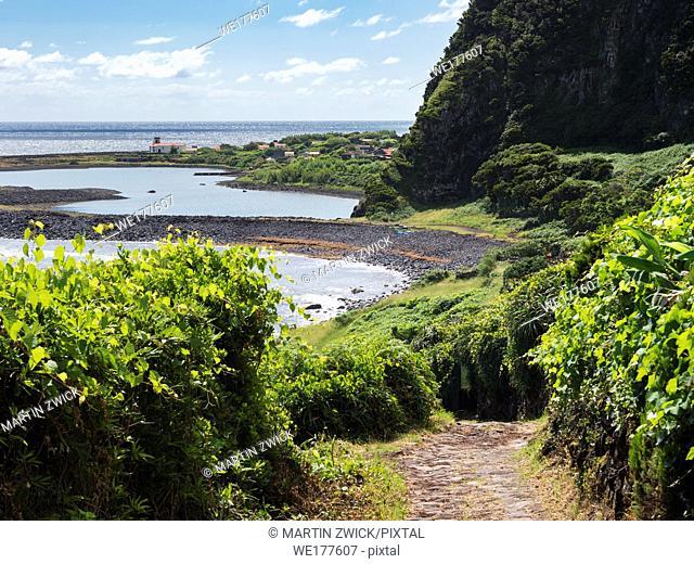 Faja da Caldeira de Santo Cristo . Sao Jorge Island, an island in the Azores (Ilhas dos Acores) in the Atlantic ocean. The Azores are an autonomous region of...