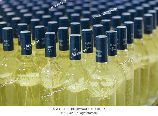 Portugal, Azores, Sao Miguel Island, Ribeira Grande, Mulher de Capote distillery, bottles of passion fruit liqueur