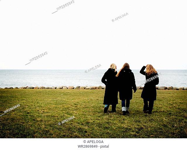 Rear view of women walking on field by sea against clear sky
