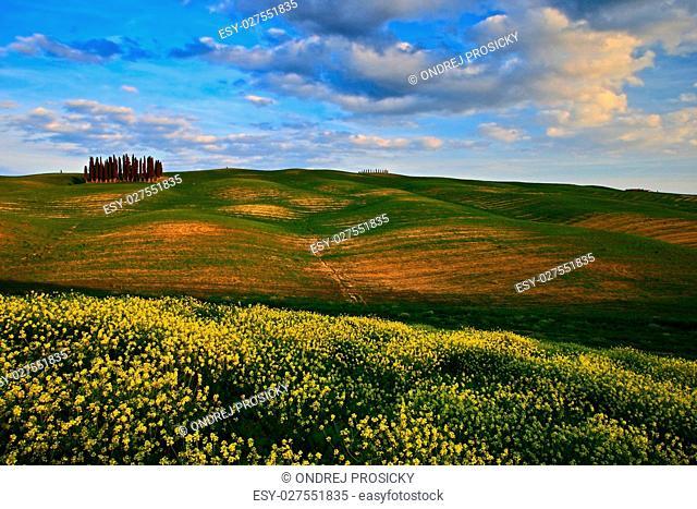Italy, Tuscany landscape