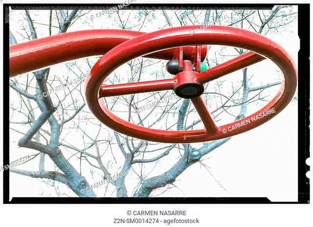 Red Wheel and tree