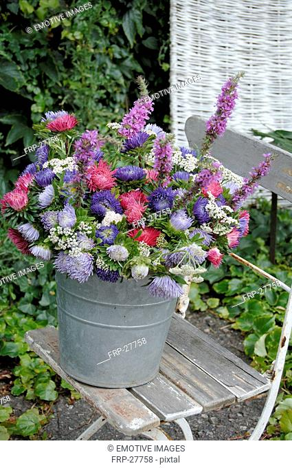 Colorful bunch of flowers with Aster