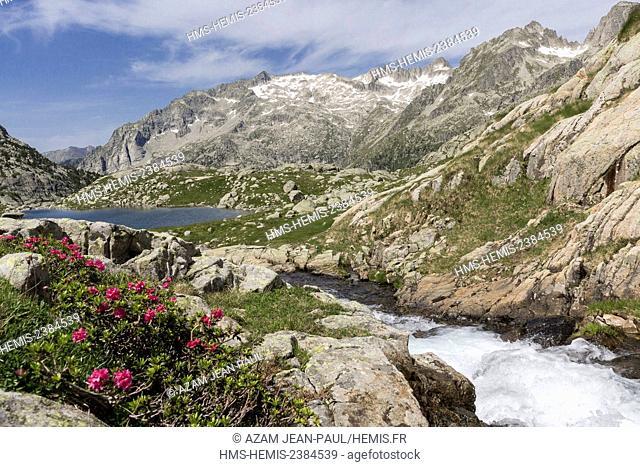 Spain, Catalonia, Val d'Aran, Arties, Aigüestortes i Estany de Sant Maurici National Park, Travessani lake and Besiberri peak