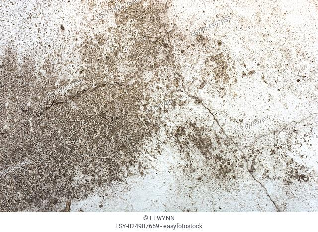 Cement wall background with rough surface texture