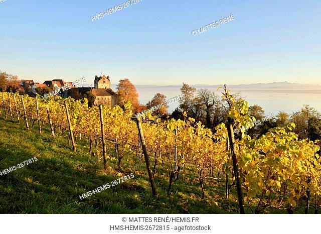 Germany, Baden Wurttemberg, Lake Constance (Bodensee), Meersburg, Altes Schloss (Old castle), Burg Meersburg and vineyard