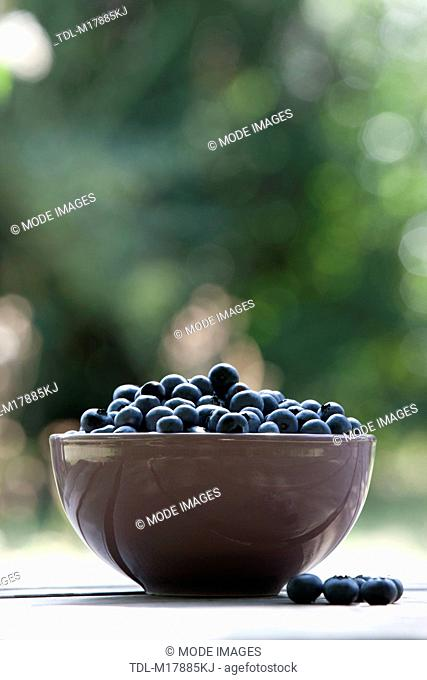 Blueberries in a ceramic bowl