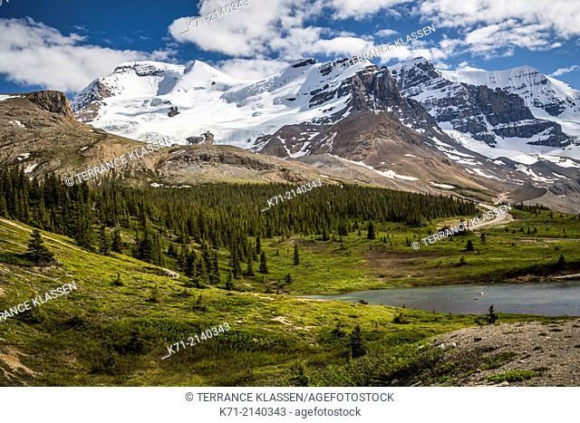 Mount Athabasca and Mount Andromeda with the Athabasca River Valley along the Icefields Parkway in Jasper National Park, Alberta, Canada