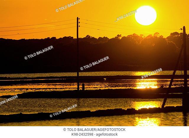 puesta de sol, salinas de Levante, Salobrar de Campos, Campos del Puerto,Majorca, Balearic Islands, Spain