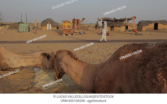 Scene in Sam dunes, Desert National Park in the Great Thar Desert,near Jaisalmer, Rajasthan, India