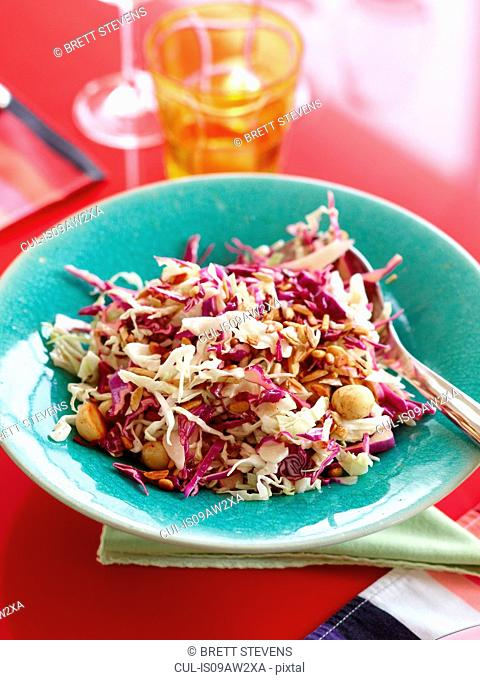 High angle view of red and white cabbage salad with macadamia nuts in blue bowl