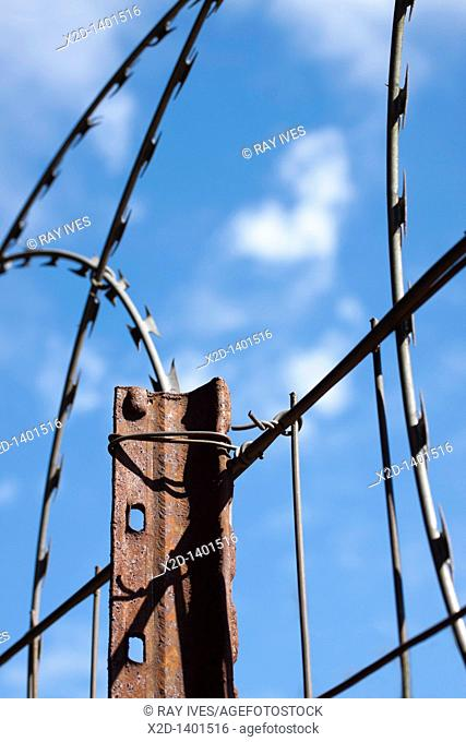 Coiled razor wire mounted on a boundary fence for security