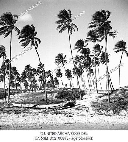 Am Strand von Itapua, Brasilien 1966. At the beach of Itapua, Brasil 1966