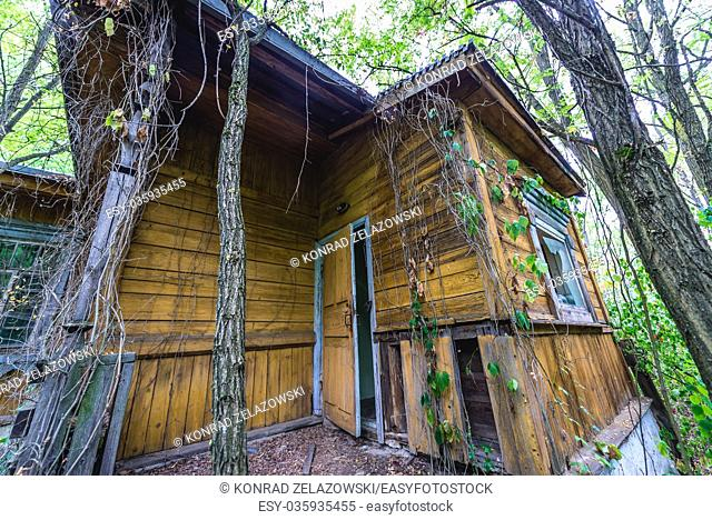 Abandoned wooden house in Pripyat ghost city of Chernobyl Nuclear Power Plant Zone of Alienation around nuclear reactor disaster in Ukraine