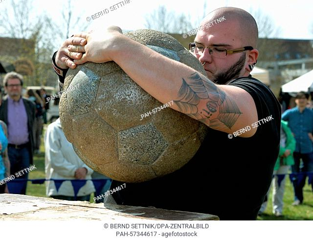 A participants in the Oranje Games lifts a 110 Kg stone ball onto a 1.4-meter-high table in Oranienburg, Germany, 11 April 2015
