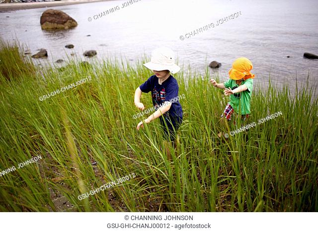 Young Boys Playing in Tall Beach Grass Near Water