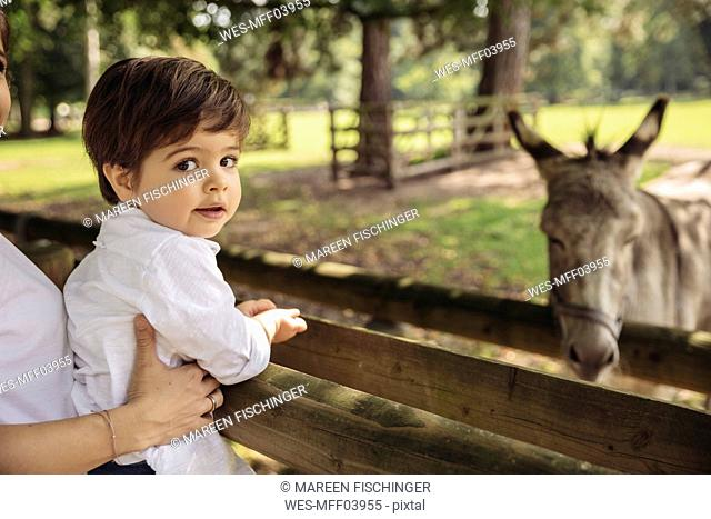 Portrait of toddler being held by his mother in a wildpark