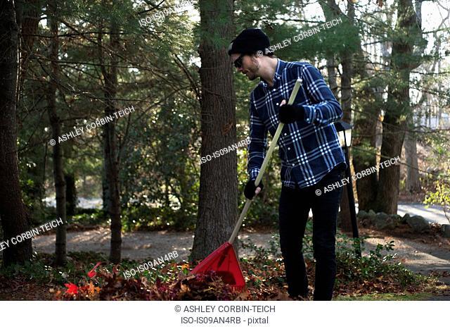 Male gardener raking pile of autumn leaves in park