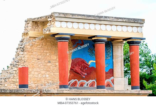 Pillars and bull fresco after Arthur Evans, parts of the Minoan temple complex of Knossos, Palace of Knossos, Knossos ancient city, Heraklion, Knossos, Crete