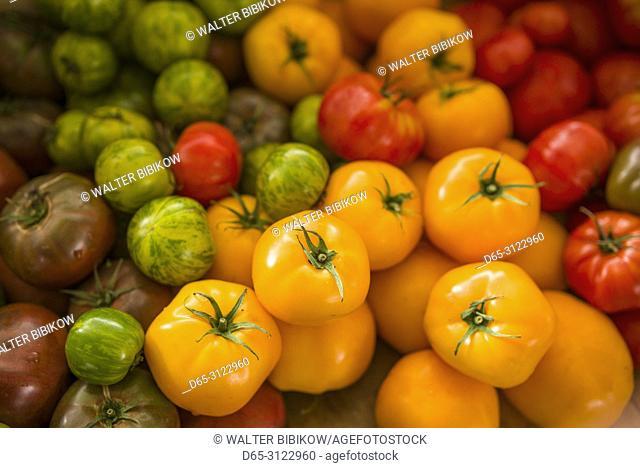 Canada, Quebec, Montreal, Little Italy, Marche Jean Talon market, autumn, tomatoes