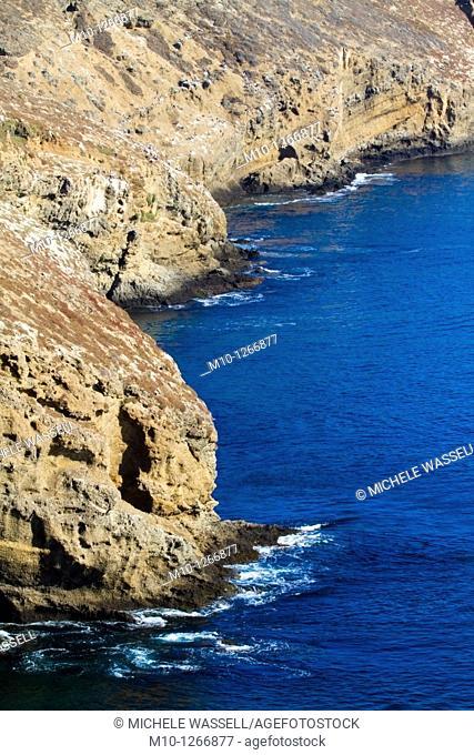 Steep cliff shoreline along Santa Barbara Island