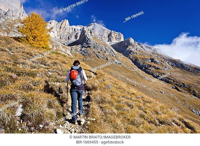 Ascent of Piz Boe Mountain on the Piazzetta Climbing Route, Dolomites, Alto Adige, Italy, Europe