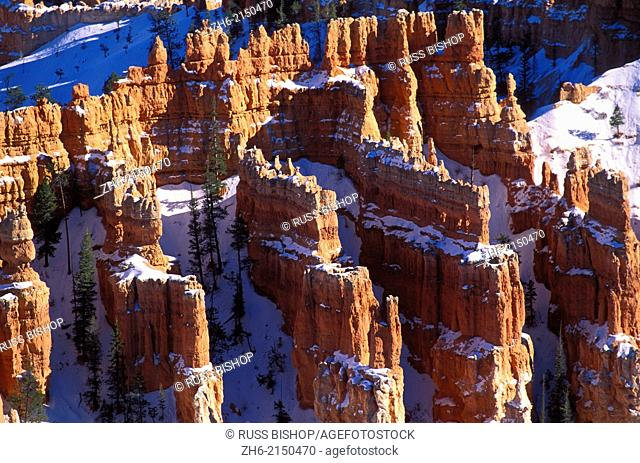 Afternoon light on hoodoos in winter below Bryce Point, Bryce Canyon National Park, Utah USA