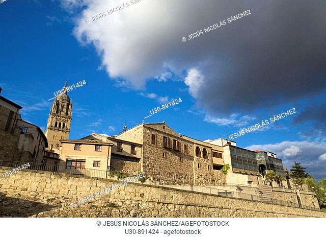Tower of the New Cathedral of Salamanca and Casa Lis view from near the Roman bridge over the River Tormes  Salamanca  Castilla y Leon  Spain