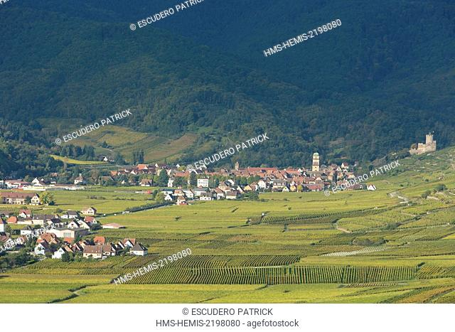 France, Haut Rhin, Route des Vins d'Alsace, Kaysersberg, the vineyards, Sainte Croix church, the dunjon of the imperial castle