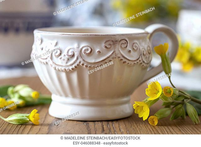A cup of herbal tea with fresh wild primula flowers