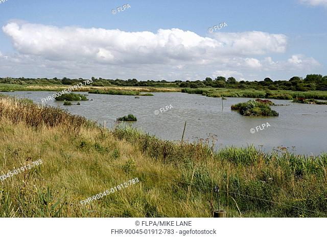 View of open water at wetland reserve, Titchfield Haven National Nature Reserve, Hampshire, England, August