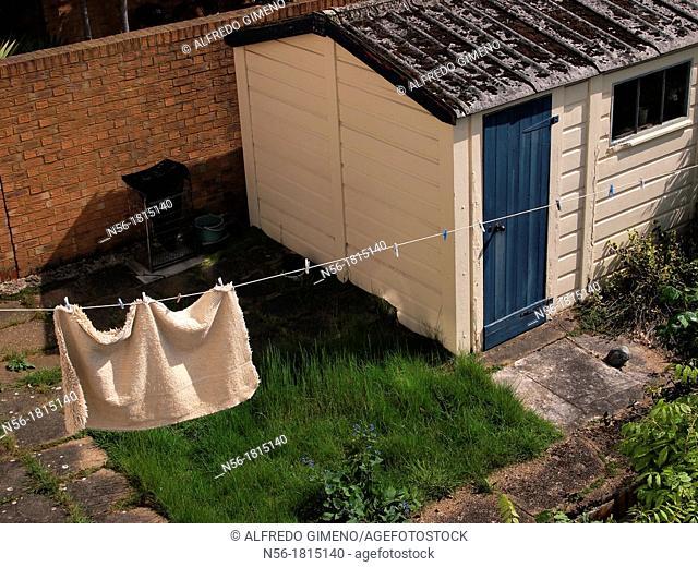 little backyard house