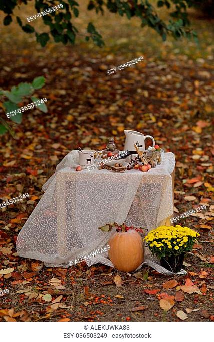 autumn picnic table -on cup and pitcher and a dessert with nuts