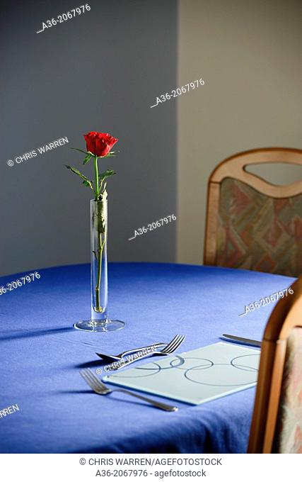 Lone table setting