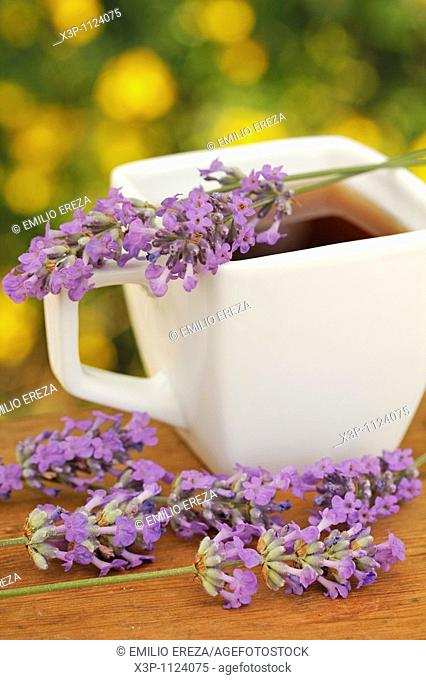 Lavender infusion