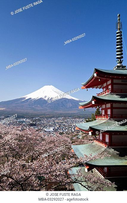 Japan, pagoda in the Arakura Sengen shrine, cherry flowers and Mount Fuji