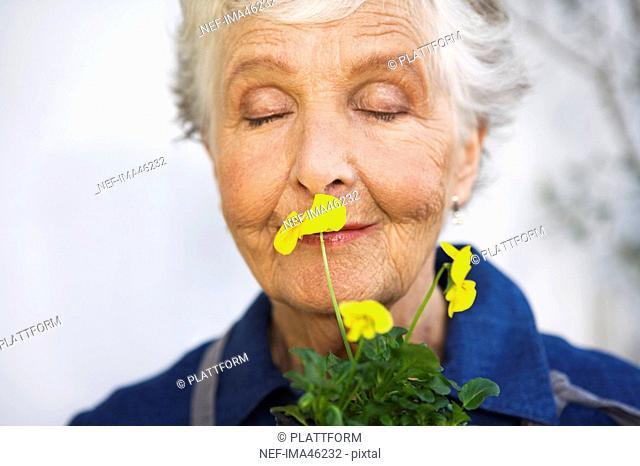 An Scandinavian elderly woman holding a flower Sweden