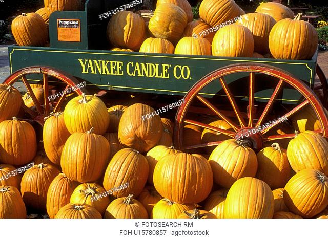 pumpkins, Wagon, South Deerfield, Massachusetts, A fall decoration of a bunch of pumpkins (in, around) a green wagon with red wheels at The Yankee Candle...