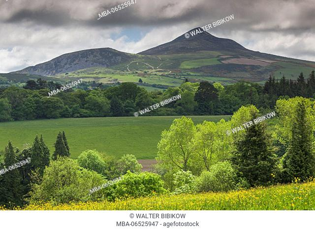 Ireland, County Wicklow, Enniskerry, Powerscourt Estate, landscape with Great Sugarloaf Mountain