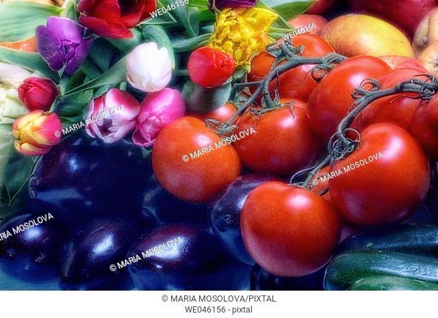 Tulips (tulipa hybrid), Tomatoes (Solanum lycopersicon), Apples (Malus domestica), Squash (Cucurbita pepo), Eggplants (Solanum melongena)