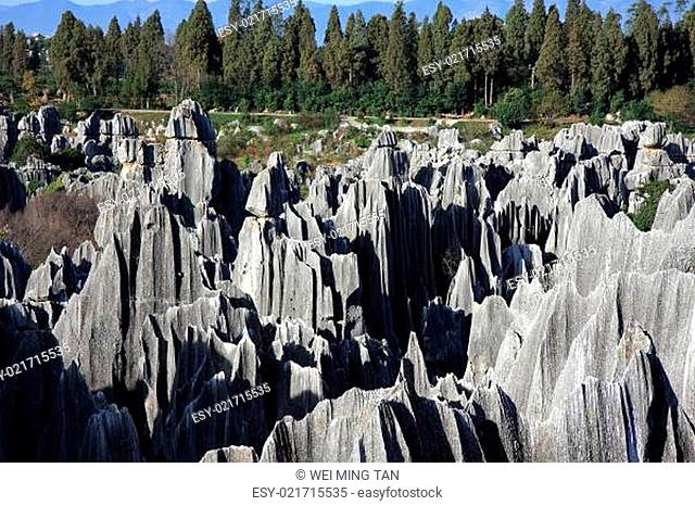 Shilin Stone Forest National Park