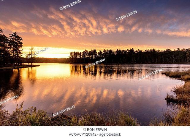 Sunrise over Mew Lake in Algonquin Provincial Park, Ontario, Canada