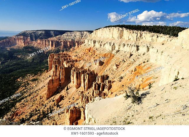 view from Powell Point, Escalante Mountains, Dixie National Forest, Utah, USA, North America
