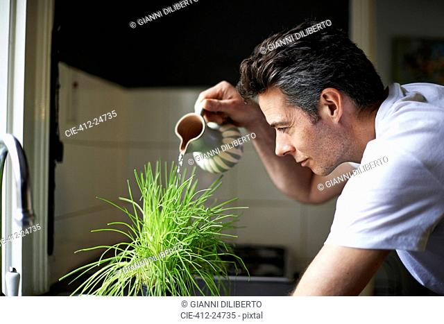 Man in kitchen,using jug,watering plant