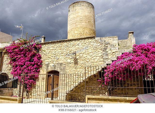 Moli d en Roca, -Tastavins -, barrio de Fartarix, Manacor, Mallorca, balearic islands, Spain