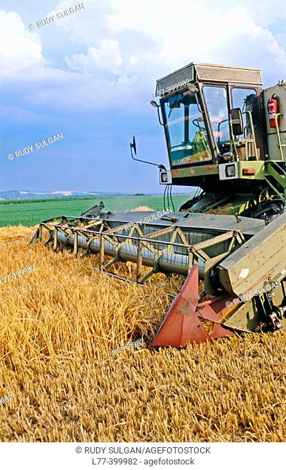 Harvest. Slovakia
