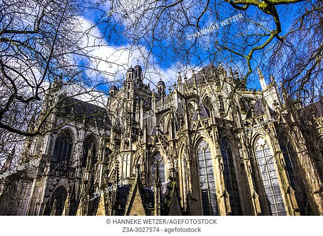 Cathedral Basilica of St. John the Evangelist, 's-Hertogenbosch, the Netherlands, Europe