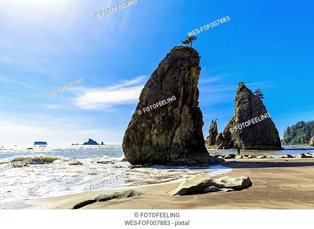 USA, Washington State, Olympic Peninsula, Olympic National Park, Pacific Ocean, Rock needles, Tourist at Rubby Beach