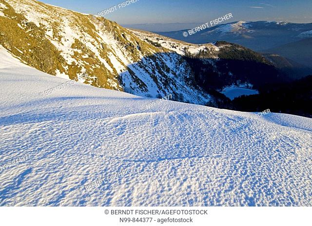 Hohneck, windswept ridge, iced snow, Vosges, lower mountain ranges, Alsace, France
