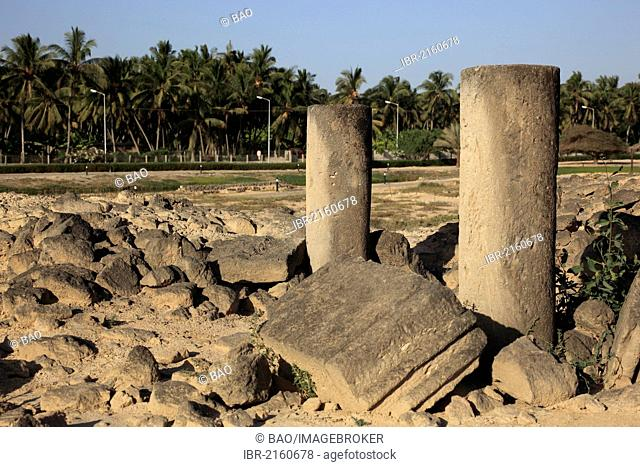 Settlement remains of the city and incense port of Al-Baleed, UNESCO World Heritage Site, Salalah, Oman, Arabian Peninsula, Middle East, Asia
